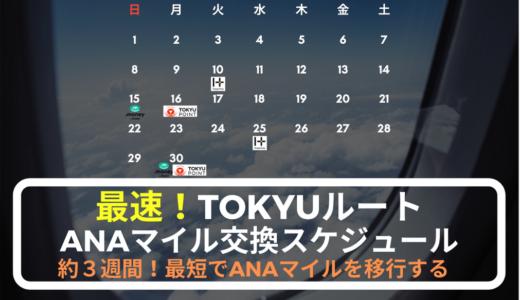 【最速】TOKYUルート交換スケジュールまとめ(ANAマイル交換率75%)