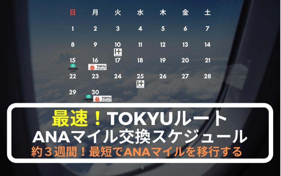 tokyu-root-schedule-min